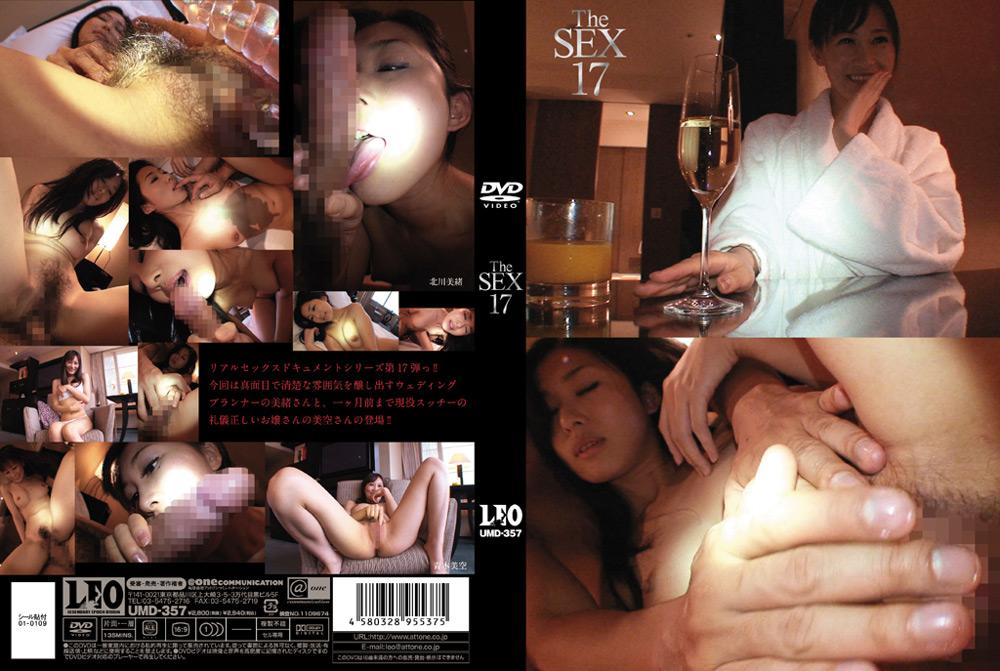 """【エロ動画】""""The SEX17″のアイキャッチ画像"""